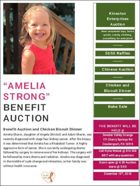 12-13 Amelia Strong Benefit Auction