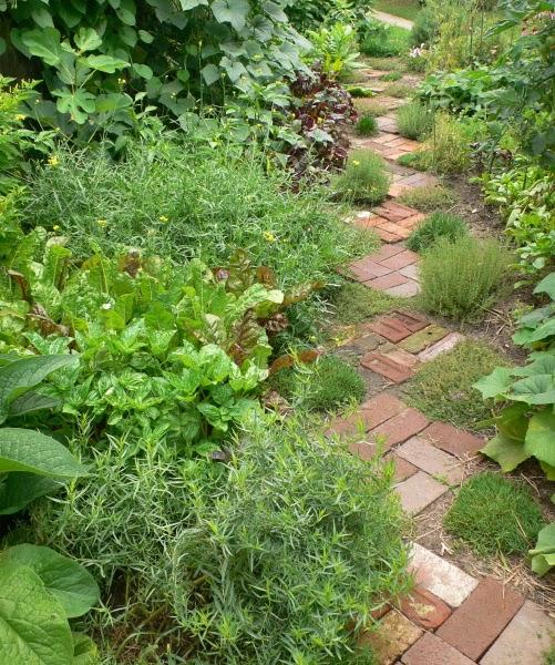 pictures of vintage herb gardens | Vintage Garden: Herb Garden