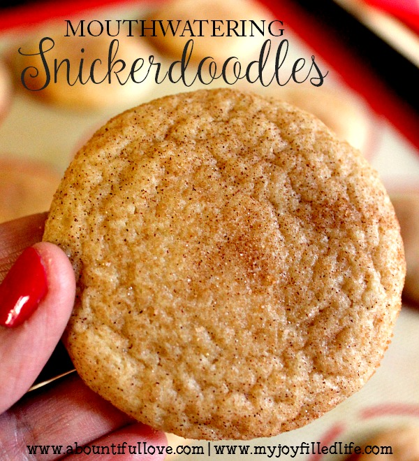 Mouthwatering Snickerdoodles