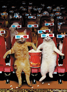 Cat's At The Movies