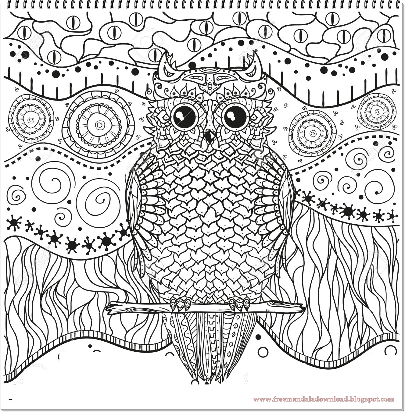 Eagle Coloring Book Page