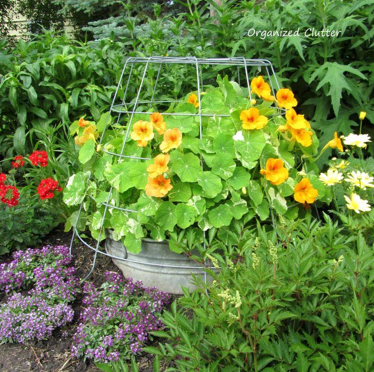 Garden Junk Ideas Galore 2014 Round Up