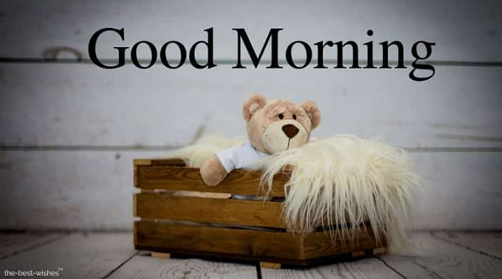 good morning with teddy bear pic