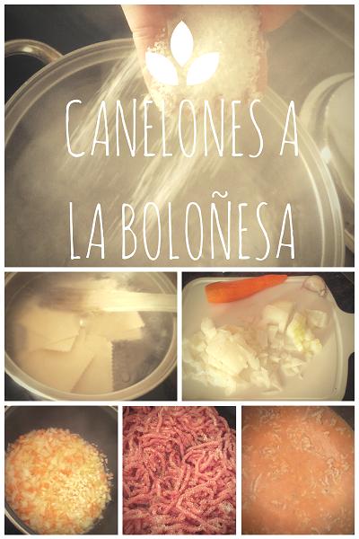 canelones boloñesa, ragú bolognese, italia, cocina, receta, cannelloni, seguridad alimentaria