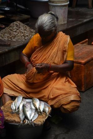 Pondichéry fish market