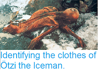 http://sciencythoughts.blogspot.co.uk/2016/08/identifying-cloths-of-otzi-iceman.html
