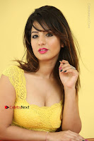 Cute Telugu Actress Shunaya Solanki High Definition Spicy Pos in Yellow Top and Skirt  0539.JPG