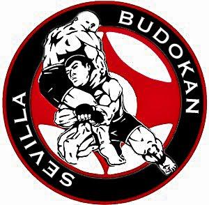Budokan blog de artes marciales - Artes marciales sevilla ...