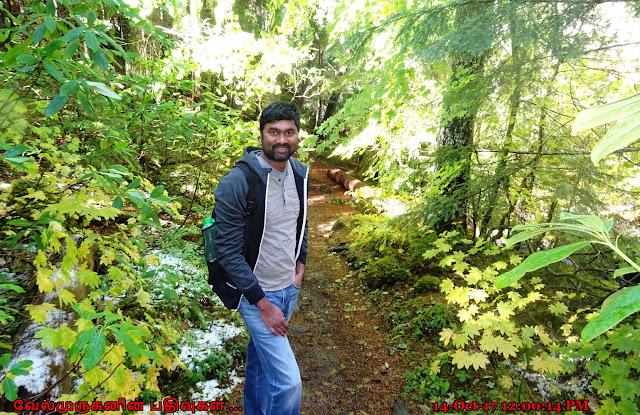 Ramona Falls Hike  Mount Hood