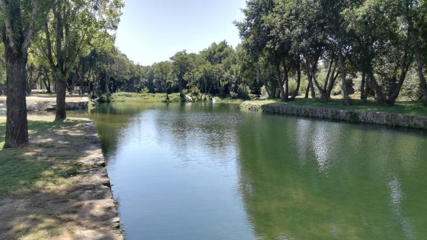 Zona do Rio Côa