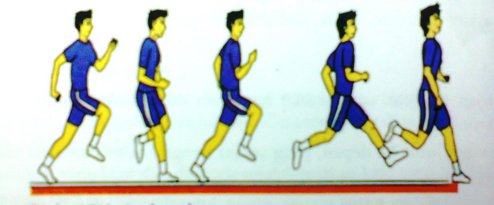 Pendidikan jasmani dan olahraga dan kesehatan, kategori ...
