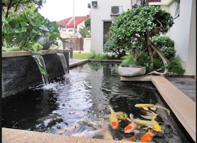 Desain Taman Minimalis Modern Dan Cantik Dengan Kombinasi Kolam Ikan Terbaik