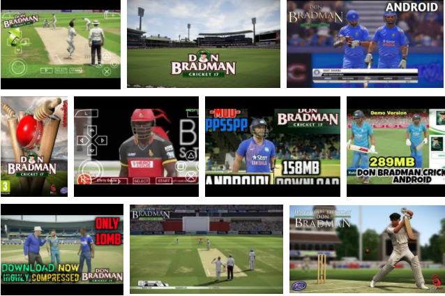 Don Bradman Cricket Game 17