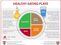 Food Plate Diagram