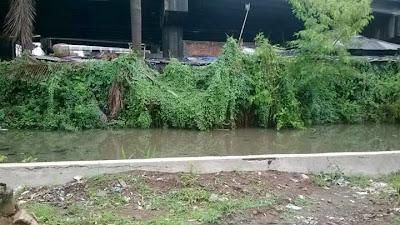 Banjir Jakarta Akankah Terulang Lagi