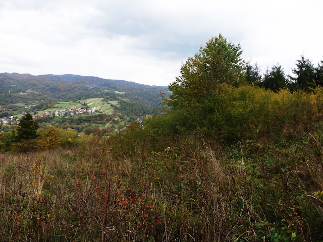 Nad Krościenkiem n/Dunajcem, październik 2016