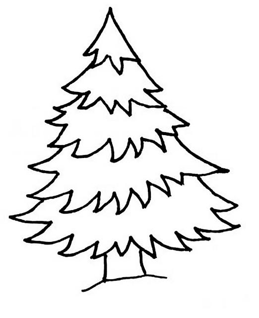 Gambar Mewarnai Pohon Cemara