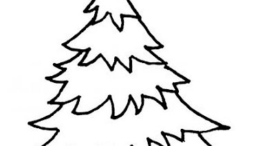 26 Mewarnai Pohon Cemara Paling Baru Lingkar Png