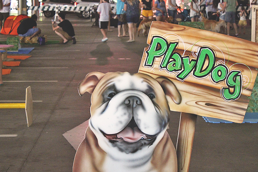 evento placa play dog