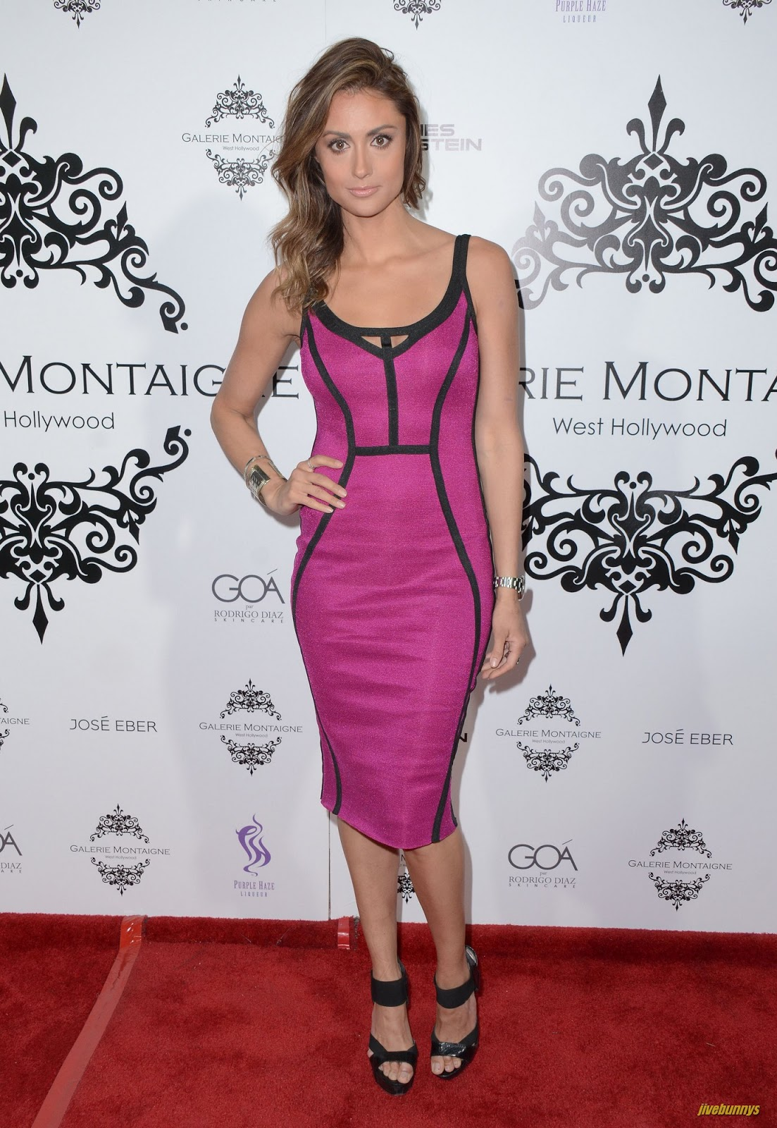 Jivebunnys Female Celebrity Picture Gallery: Katie Cleary Celebrity ...
