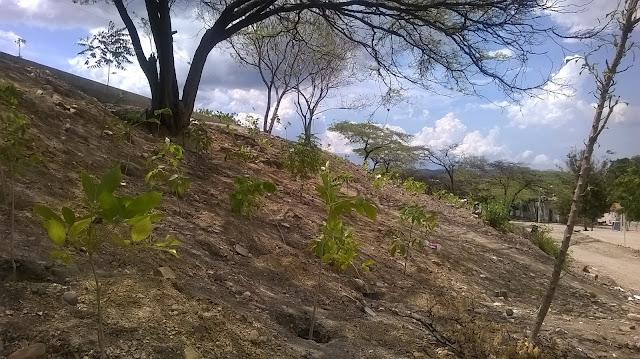 #RSY Noticias | En Chapinero-Cúcuta, propuesta de ECOPARQUE INTELIGENTE recibe apoyo incondicional #CF #CorpoFrontera