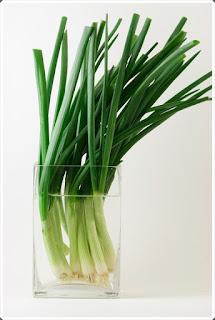 Şifalı Bitkiler 3