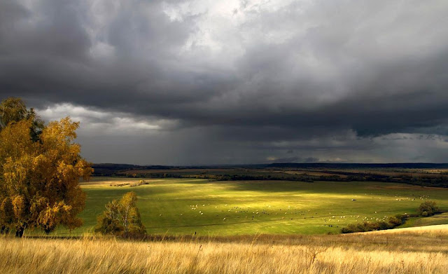 thunderstorm green meadow nature