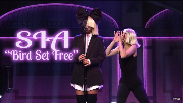 Terjemahan lirik lagu Sia Bird Set Free (Live From SNL)