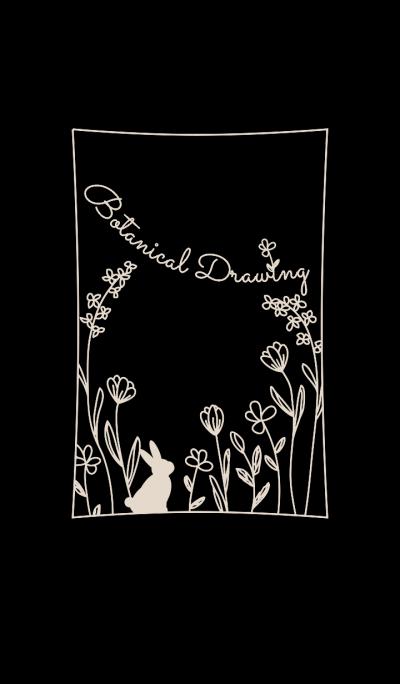 植物绘画/黑 14