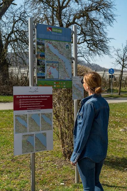 Wandern Konstanz Bodensee SeeGang Etappe 3 - Riedwiesen und Steiluferlandschaften am Überlinger See: Von Bodman durchs Aachried nach Ludwigshafen und auf dem Blütenweg nach Sipplingen 2