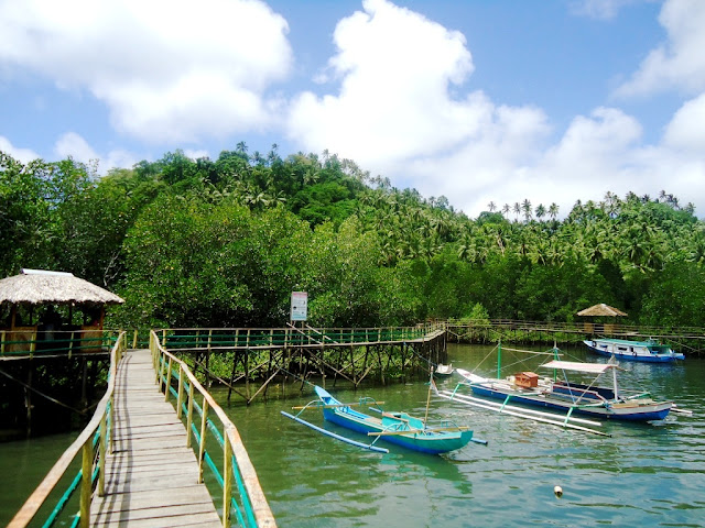 Pemandangan Ekowisata Mangrove Sulawesi Utara