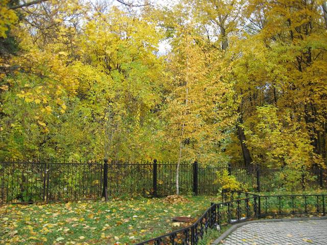 Осень, осень, листья опадают…