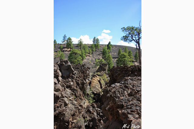 M-ii Photo : Sunset Crater Volcano National Monument