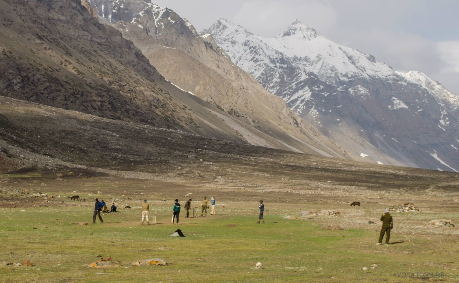 Playing cricket at an altitude of 4200 meters , Dumti ITBP camp