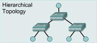 Topologi Jaringan Tree / Hierarchical (Hirarki)