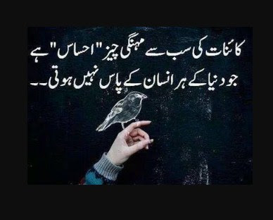 Urdu Poetry | Urdu Quotes | Urdu Quotes About Life | Urdu Quotes Images | Urdu Quotes Pics - Urdu Poetry World,Urdu poetry about friends, Urdu poetry about death, Urdu poetry about mother, Urdu poetry about education, Urdu poetry best, Urdu poetry bewafa