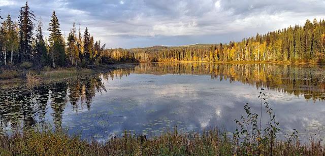 Herbstliche Farben im Norden BC´s