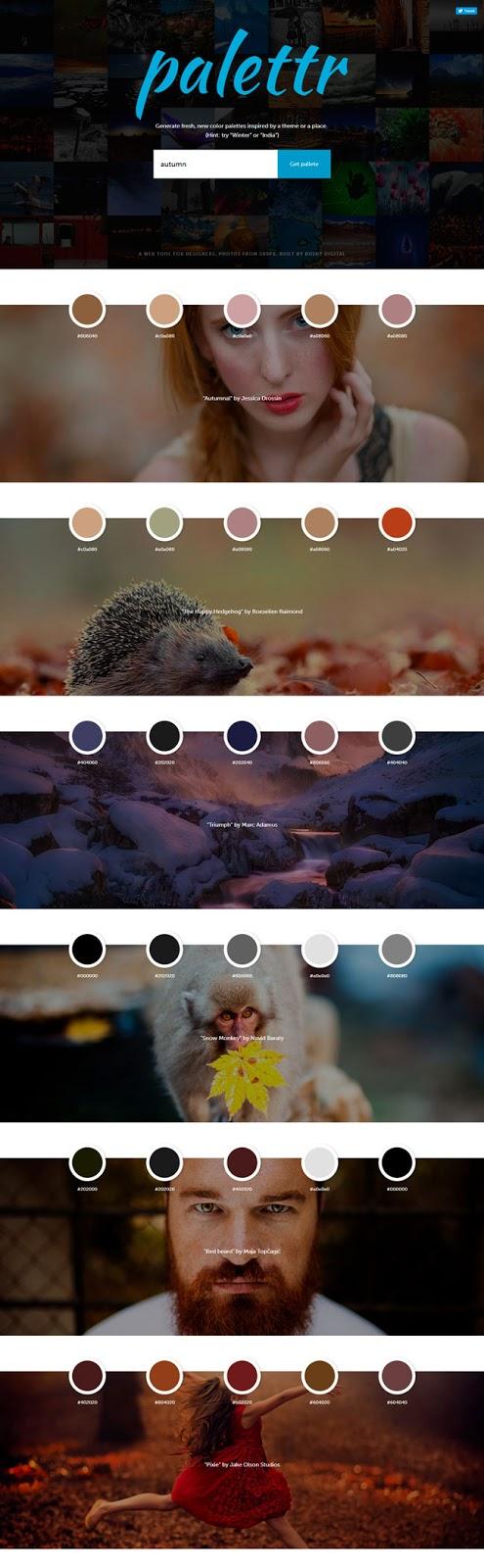 palettr_sitio