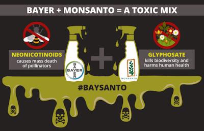ΣΥΡΙΖΑ: Άδεια μέχρι το 2023 στο ζιζανιοκτόνο της Monsanto!