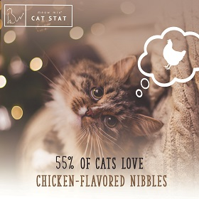 cats love chicken banner