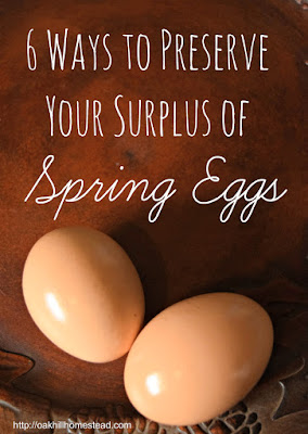 6 ways to preserve a surplus of spring eggs