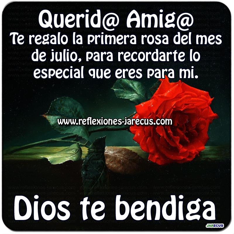 Querid@ amig@, te regalo la primera rosa del mes de julio, para recordarte lo especial que eres para mi Dios te bendiga.