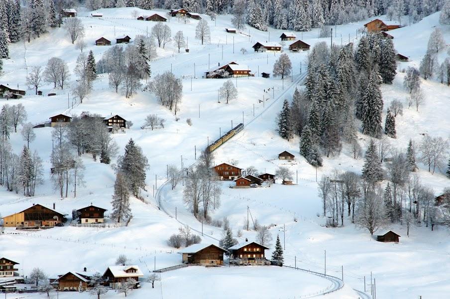Train Switzerland Grindelwald