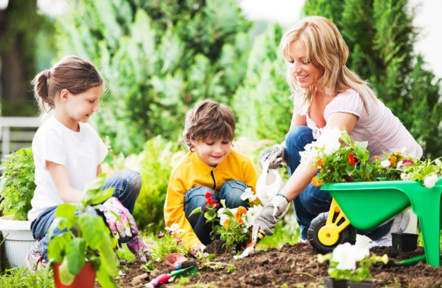 Berkebun adalah menyehatkan