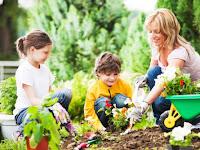 Tingkatkan Kesehatan Anda Dengan Cara Berkebun Agar Hidup Lebih Lama