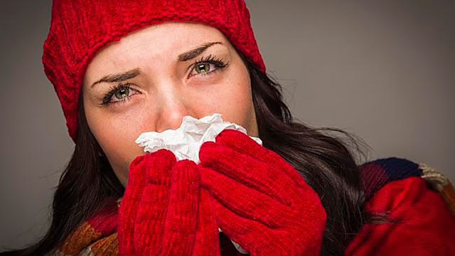 6 Foods That Fight Flus And Colds