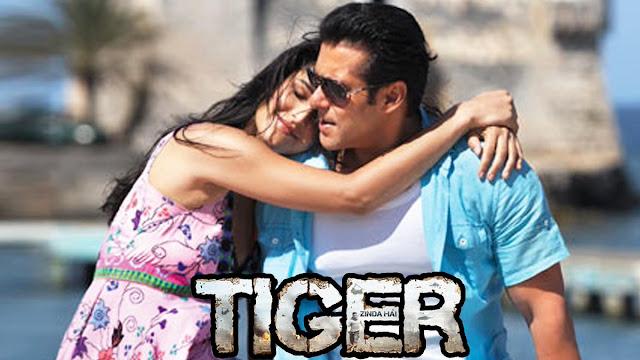 tiger zinda hai shoot in march Salman Khan and Katrina Kaif