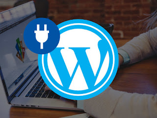 2016 WordPress Mega Plug-in Bundle