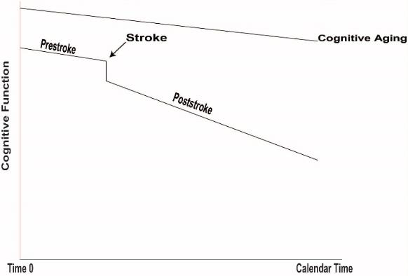 図:脳卒中による認知機能低下モデル