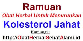 Ramuan obat herbal untuk menurunkan kolesterol jahat